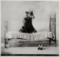 "Gregori Maiofis (b. 1970, St. Petersburg Russia) - ""Politics Makes Strange Bedfellows""PDNB Gallery"
