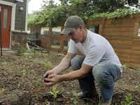 Stephen Smith transplants okra in one of the backyard beds.Ron Baselice  -  Staff Photographer