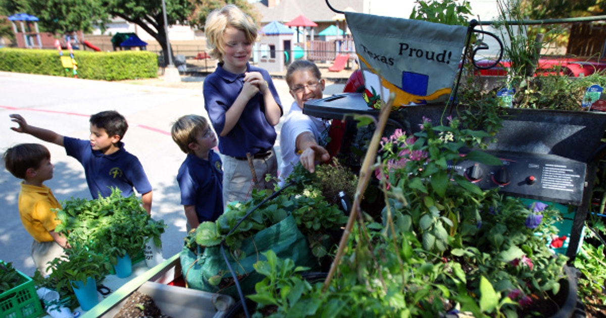 Roses In Garden: Food Truck Mobile Vegetable Garden To Be Part Of State