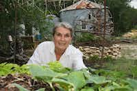 Deb Tolman of Clifton, who has researched African survival strategies, is an expert on producing vegetables using a method called keyhole gardening. An example made of local limestone is visible behind her.(Bill Smith - Wesmedia Productions)