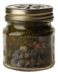 Pint-size: No searching for ingredients with the Tiny Terrarium Kit, which includes a glass Mason jar with perforated lid, moss and pebbles. It's perfect for a child's project. Find it in the stocking-stuffers clearance section for $7.99 at Restoration Hardware, multiple locations, and restorationhardware.com. The company also carries larger terrariums, including the Geodesic, a triangle-paneled design based on repurposing an antique chandelier.