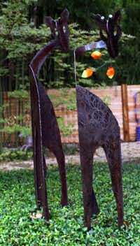 Greta and Giraud are two of the metal sculptures that grace the back yard of artist Cynthia Daniel's White Rock area home in Dallas, Texas. They were photographed Saturday, October 06, 2012, for the upcoming artist's studio tour.