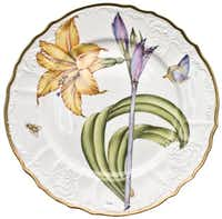 Anna Weatherley's Botanical Study Dinner Plate 6, $395 at Copper Lamp, Dallas.( Supplied  - SUPPLIED)
