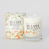 Art encased: A candle's cylindrical container — with a watercolor motif created by Toronto designer Virginia Johnson — is as appealing as its tangy citrus-meets-floral scent. Give it as a gift or keep it for yourself and use the lid as a candle base. Nectarine Blossom, $45 at shopterrain.com.Supplied  - SUPPLIED