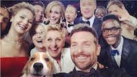 To the folks at Dallas Pets Alive, the only thing missing from the viral Oscars selfie of Ellen DeGeneres, Bradley Cooper and friends was Sandy the dog. But they took care of that.Dallas Pets Alive  -  Muttbombing.com