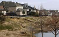 A view from the back of Brian Woodward's home where a failing slope creeps up on their backyard in Frisco on Wednesday, January 20, 2016. The backyard faces a six-acre open space that slopes down from their fence to a pond. The problem continues to escalate while the HOA and developer argue over who's responsible.(Vernon Bryant - Staff Photographer)