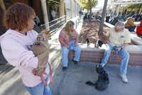 Elizabeth Rogers (left), with Layla; Judith Barwick, with Budwizer; and Mike Curtis, with Socks, get some sun and fresh air at The Bridge. The shelter began offering a kennel facility four years ago for the dogs of its clients.( Michael Ainsworth  -  Staff Photographer )