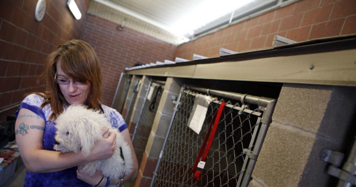 Kennel At The Bridge Shelter Welcomes Dallas Homeless Who
