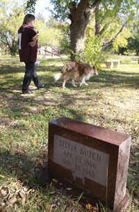 Elizabeth Haley walks her dog Lucy through the Pet Memorial Park in Cedar Hill.
