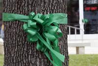 Kaufman County clerks and other county workers tied green ribbons around trees at the county courthouse on Monday.