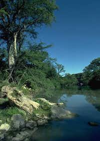 Guadalupe River State Park near San Antonio has four miles of river frontage.Texas Parks and Wildlife