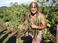 """Pa,"" Papaapaiikoeiaku Teuruaa, pulls up some arrowroot on his Nature Walk. This is an acclaimed Rarotongan who has earned respect worldwide for his mountain guiding, marathon ocean swimming, and practice of traditional herbal medicine."