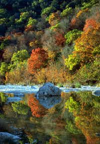 The 2,174 acres of Lost Maples State Natural Area provides fall color 75 miles east of San Antonio.(Texas Parks & Wildlife)