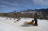 The Durango Dog Ranch will offer dog-sledding at the base area at Durango Mountain Resort near Durango, Colo. Siberian and Alaskan huskies pull guests through amazing scenery.