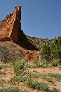 Caprock Canyons State Park, 100 miles southeast of Amarillo, offers hiking trails for all abilities.