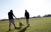 """Lisa Buchanan and her son, Conner, 15, walk their dog, Trixie, together in Plano on Friday, March 25, 2011. Conner who was diagnosed with OCD at age 8, but says now, """"I'm clean,"""" feels that physical exercise helps relieve his anxiety."""