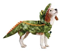 There's more bark than bite in an alligator costume at Petco that comes in four sizes, from extra-small to large. $19.99 to $24.99.