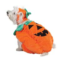 One of PetEdge's perennial faves, the costume comes in sizes from extra-small to extra-large, starting at at $19.99.