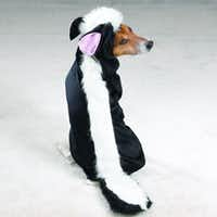 PetEdge's skunk costume for dogs is available in small to extra-extra-large. Suggested retail $22.99 to $32.99.(PetEdge)