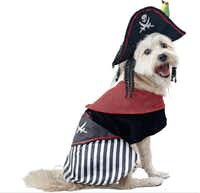 Petco's pirate includes long locks and a parrot. Extra-small to extra-large, $19.99 to $24.99.