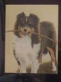 """""""Carrying a Big Stick"""" by Phyllis BronderColored Pencil Society of America"""