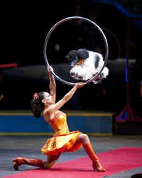 Ringling Bros. and Barnum & Bailey Circus? Dragons comes to American Airlines Center, July 31-Aug. 11.