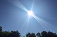 The sun is out on Sunday. (Naomi Martin/ DMN)