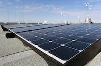 The Cedar Hill government center's 480 rooftop panels generate enough energy to power 14 to 15 homes.