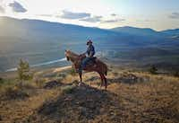 A wrangler stops at a scenic overlook at Sundance Guest Ranch. Never been on a horse? A ranch hand will teach you the basics.Photos by Remy Scalza  - Remy Scalza