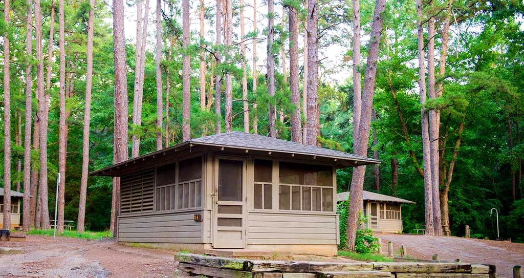 texas cozy cabins tyler state park makes a great natural getaway from dallas texas