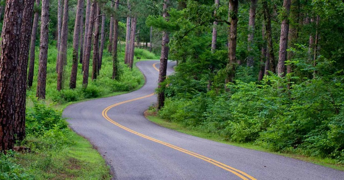 Tyler State Park makes a great natural getaway from Dallas ...