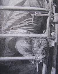 """""""Hungry Little Tyke"""" by Toni WenglerColored Pencil Society of America District Chapter 215"""