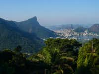 The Tijuca National Park sprawls across large parts of Rio de Janeiro. A hike to the summit of the Pico da Tijuca yields splendid views.(  Colin Barraclough  -  Special Contributor )