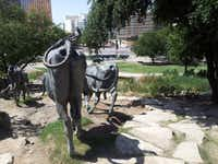 The tail end, literally, of the (bronze) cattle drive in Pioneer Plaza.