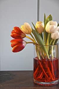 Add food coloring to water in a clear glass vase to ramp up the presentation.