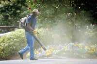 Tim Knight, with Knight's Lawn Service, kicks up a small cloud of pollen and tree debris while finishing a job in Atlanta, March 21, 2012. Spring has arrived early this year, causing changes such as pollen levels hitting record highs.