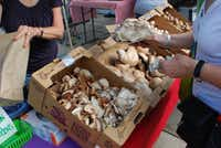 A customer picks out her preferred mushroom at the Kitchen Pride Mushroom Farm stand at the White Rock Local Market.