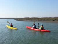 Kayakers take off at Wild Dunes Resort in South Carolina.Wild Dunes Resort