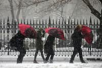 A group of travel advisors touring Manhattan lower their heads and umbrellas into the wind as they walk along Broadway near Trinity Church during a snow storm, Saturday, Jan. 23, 2016, in New York. (AP Photo/Julie Jacobson)