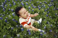 11 month old, John Orellana of Grand Prairie doesn't want to smile for the photo his mother Cindy Orellana of Grand Prairie was prepared to shoot in the field of bluebonnets along the southbound side of spur 408 a mile before the Kiest Blvd. exit in Dallas, on Wednesday, March 28, 2007. Although John was obviously unhappy his mother thought it was cute. (Vernon Bryant/The Dallas Morning News)
