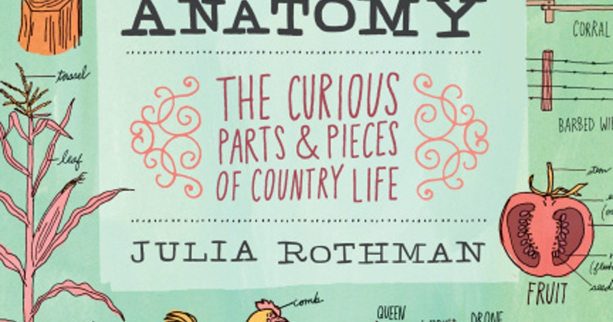 Farm Anatomy\' gives color to the country life | Home | Dallas News