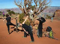 The group stopped to stretch and do yoga poses on the hike down South Kaibab Trail.Bill O'Leary  -  The Washington Post