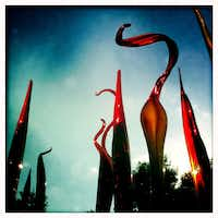 Chihuly's Silvered Red Bamboo and Cattails at the Dallas Arboretum.  Photographed with an iPhone using the Hipstamatic app.Tom Fox