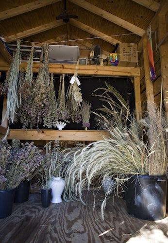 Dried Flower Arrangements Dallas News Life Dallas News