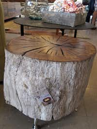Oak Tree Coffee Table at Red, a home decor store in Fredericksburg.