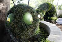 """This caterpillar topiary is part of the """"First Adventure"""" gallery at the Rory Meyers Children's Adventure Garden at the Dallas Arboretum."""
