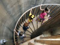 Summer campers climb the circular staircase in the Habitats Learning Gallery Tree at the Dallas Arboretum's new Rory Meyers Children's Adventure Garden .