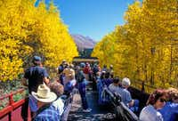 Riders enjoy gilded scenery from an open car on the Leadville, Colorado & Southern Railroad. Passengers onboard hear tales of the town's past on a 2-hour ride though the mountains.