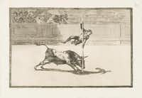 The etching and aquatint La Tauromaquia reveals the agility and audacity of the bullfighter in the ring in Madrid. It is from 1814-16.(Meadows Museum - Meadows Museum)