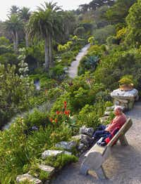 Tresco, one of the Isles of Scillya an archipelago renowned for its white sandy beaches and teal blue waters 28 miles off the southwestern coast of England, is renowned for its tranquil gardens.